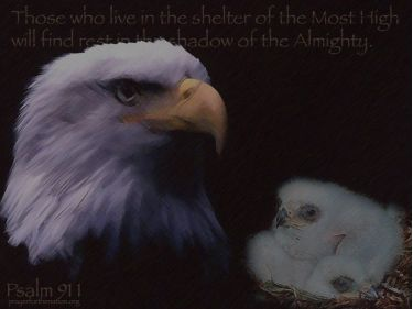 PowerPoint Background: Psalm 91:1 Song