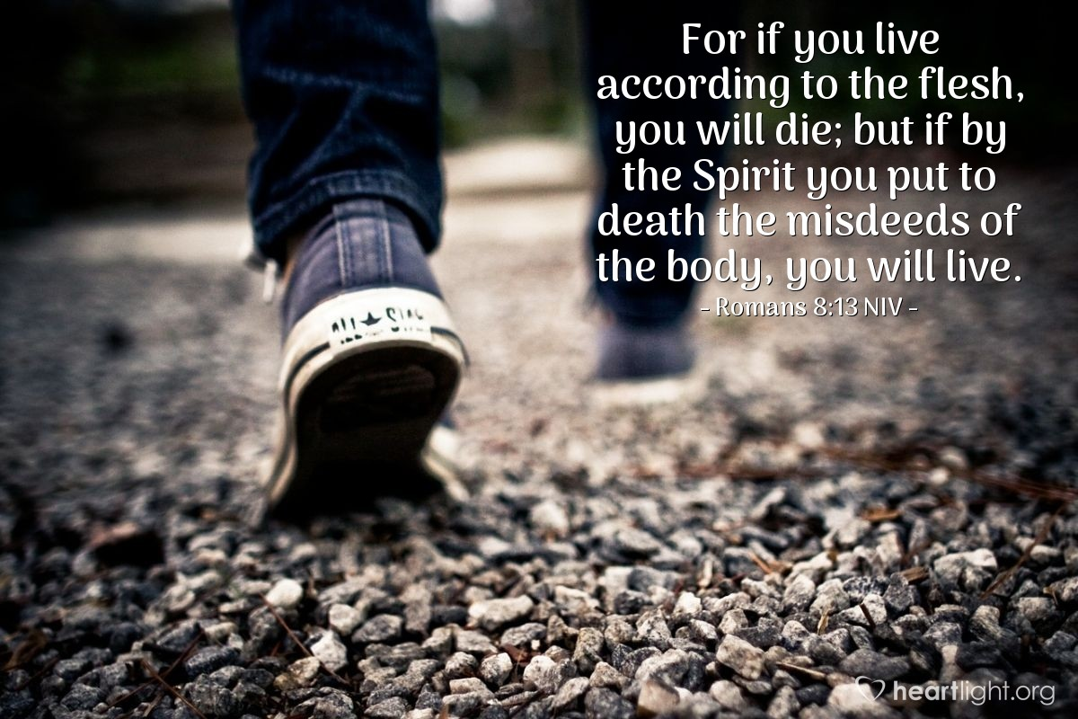 Illustration of Romans 8:13 NIV — For if you live according to the flesh, you will die; but if by the Spirit you put to death the misdeeds of the body, you will live.