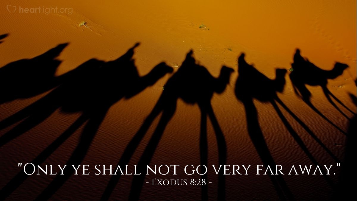 "Illustration of Exodus 8:28 — ""Only ye shall not go very far away."""