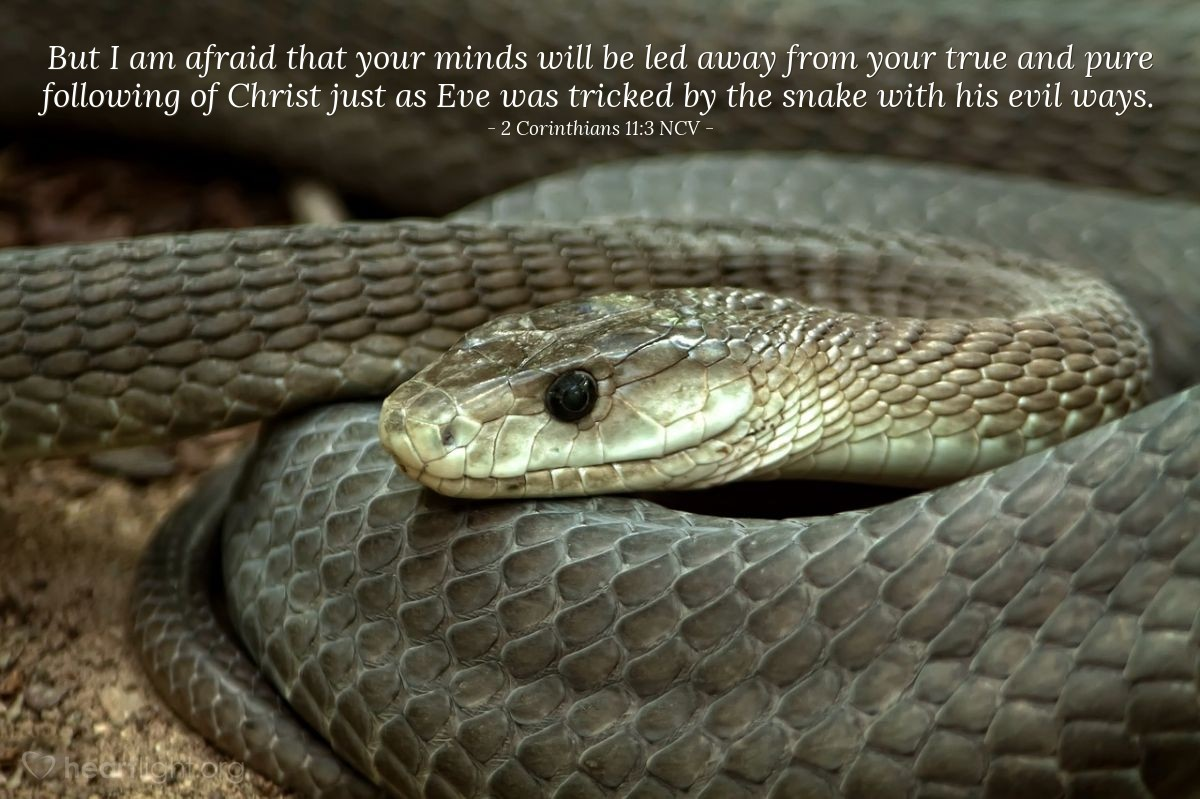 Illustration of 2 Corinthians 11:3 NCV — But I am afraid that your minds will be led away from your true and pure following of Christ just as Eve was tricked by the snake with his evil ways.