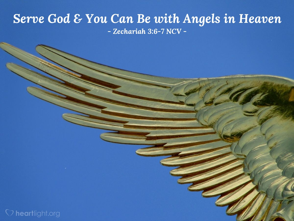"""Illustration of Zechariah 3:6-7 NCV — Then the Lord's angel said to Joshua, """"This is what the Lord All-Powerful says: 'If you do as I tell you and serve me, you will be in charge of my Temple and my courtyards. And I will let you be with these angels who are standing here.'"""""""