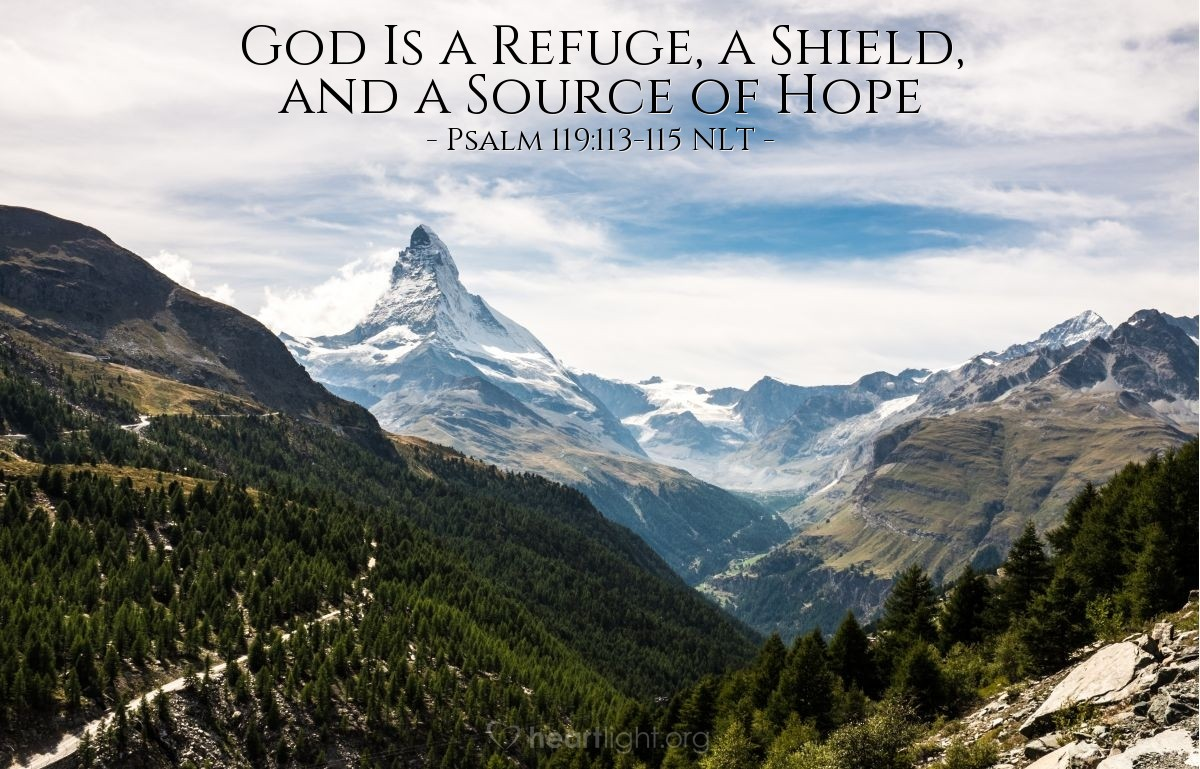 Illustration of Psalm 119:113-115 NLT — I hate those with divided loyalties, but I love your instructions. [LORD] You are my refuge and my shield; your word is my source of hope. Get out of my life, you evil-minded people, for I intend to obey the commands of my God.