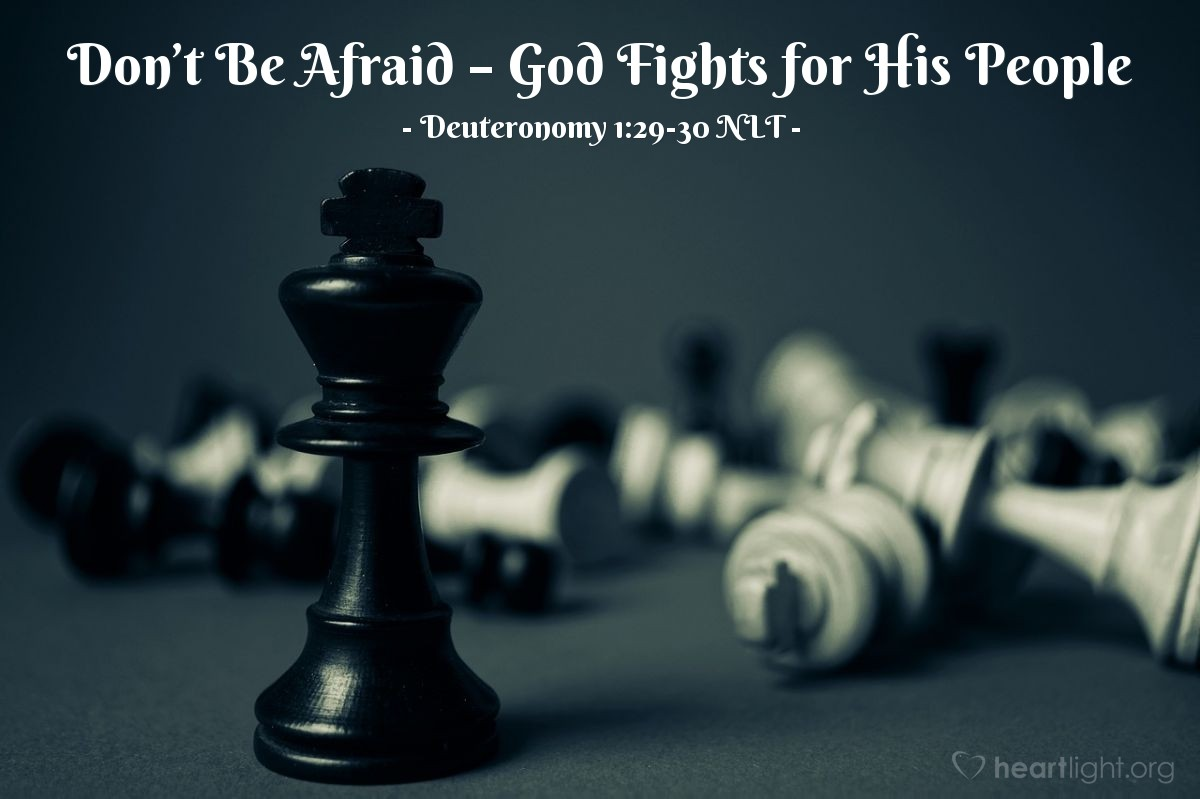 """Illustration of Deuteronomy 1:29-30 NLT — But I said to you, """"Don't be shocked or afraid of them!  The Lord your God is going ahead of you. He will fight for you, just as you saw him do in Egypt."""