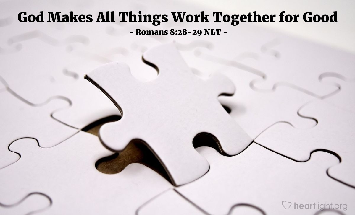 Illustration of Romans 8:28-29 NLT — And we know that God causes everything to work together for the good of those who love God and are called according to his purpose for them.  For God knew his people in advance, and he chose them to become like his Son, so that his Son would be the firstborn among many brothers and sisters.