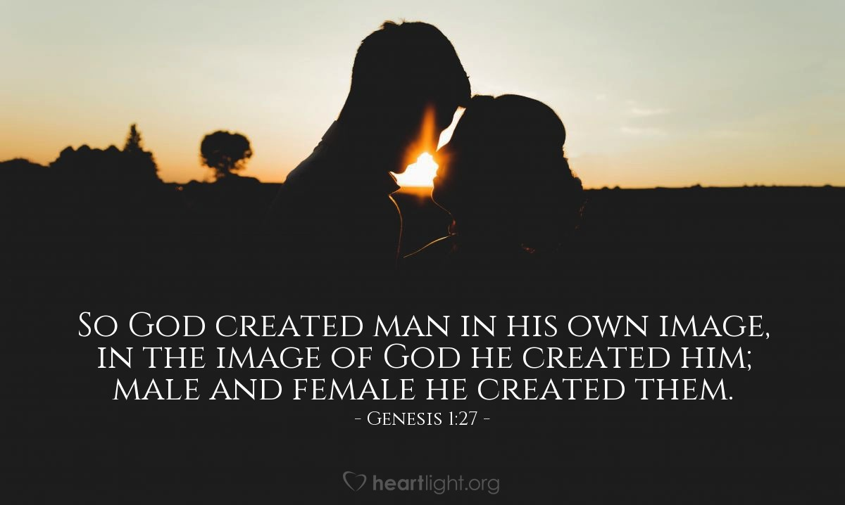 Illustration of Genesis 1:27 — So God created man in his own image, in the image of God he created him; male and female he created them.