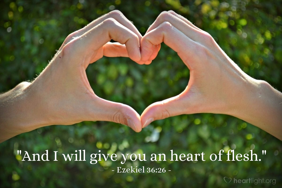 """Illustration of Ezekiel 36:26 — """"And I will give you an heart of flesh."""""""