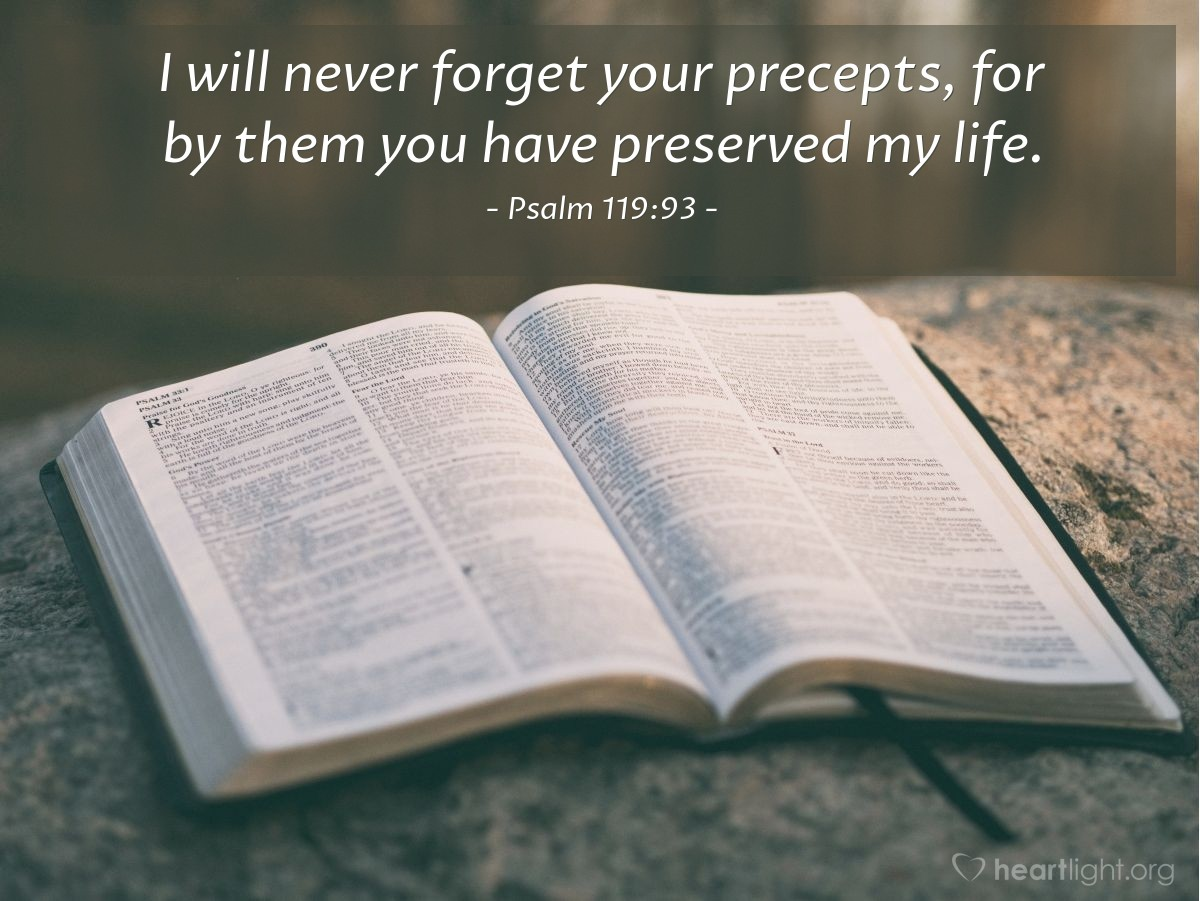 Illustration of Psalm 119:93 — I will never forget your precepts, for by them you have preserved my life.