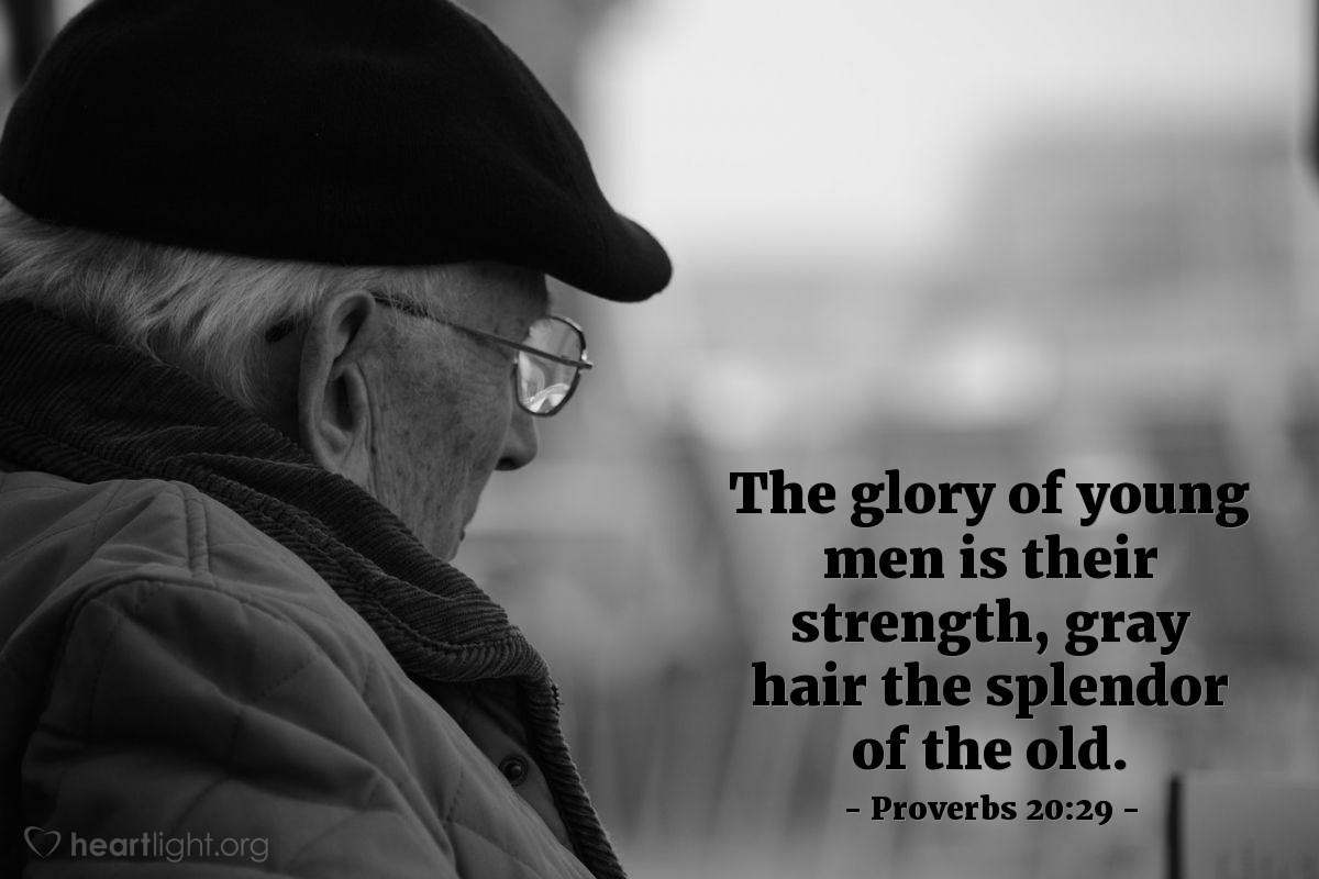 Illustration of Proverbs 20:29 — The glory of young men is their strength, gray hair the splendor of the old.