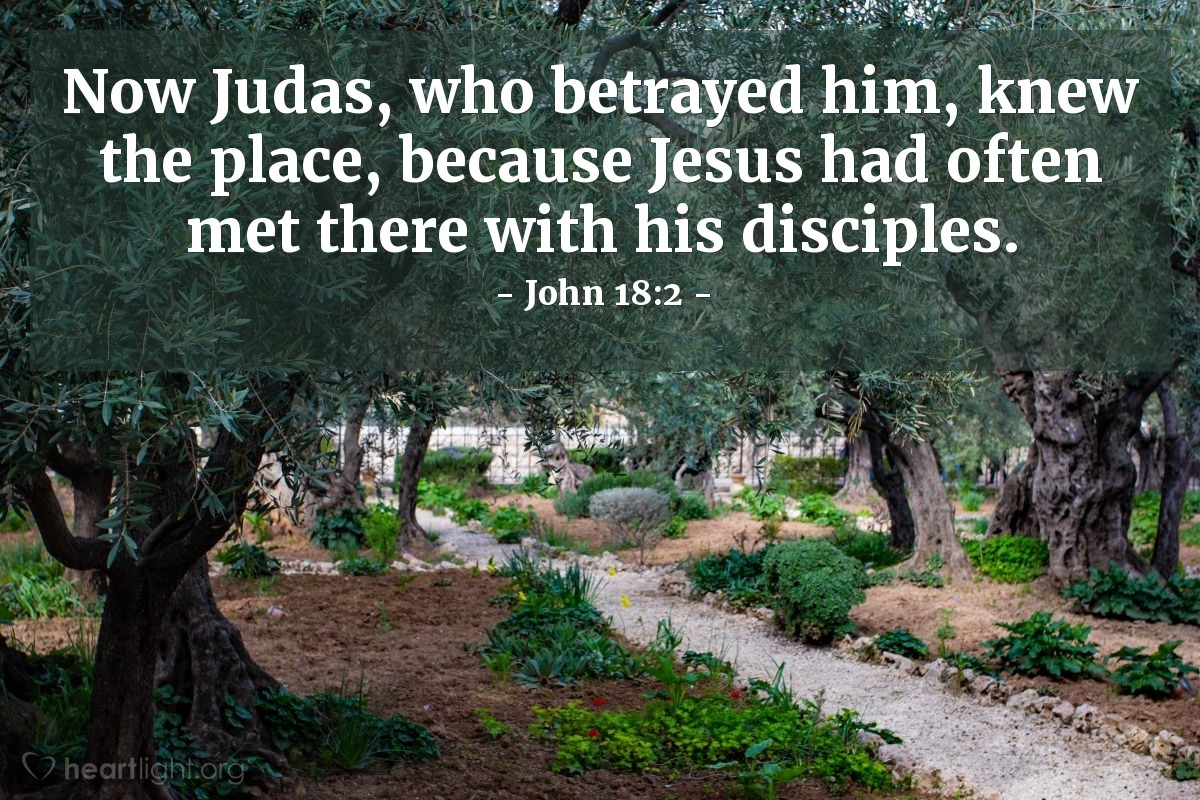 Illustration of John 18:2 — Now Judas, who betrayed him, knew the place, because Jesus had often met there with his disciples.