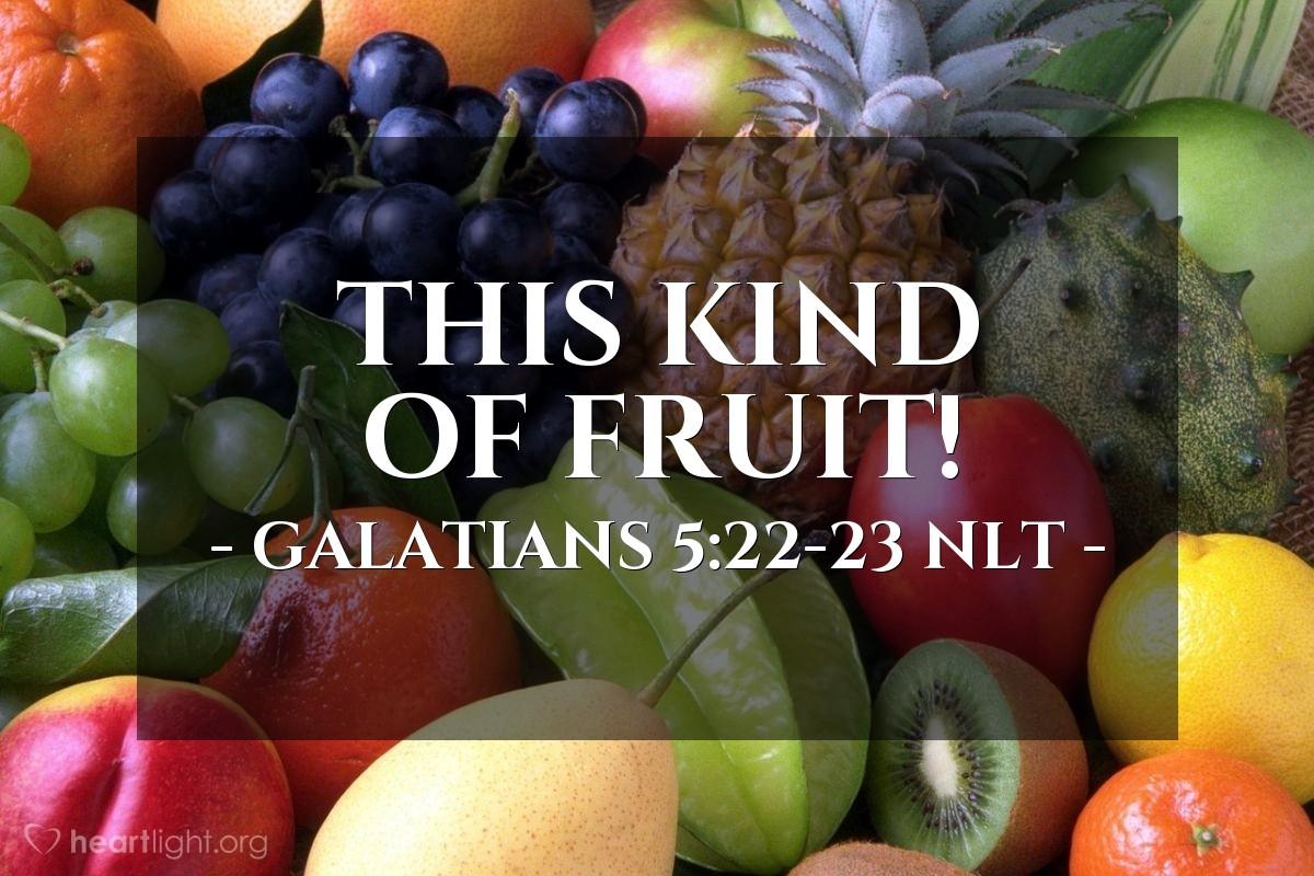 Illustration of Galatians 5:22-23 NLT — But the Holy Spirit produces this kind of fruit in our lives: love, joy, peace, patience, kindness, goodness, faithfulness, gentleness, and self-control. There is no law against these things!