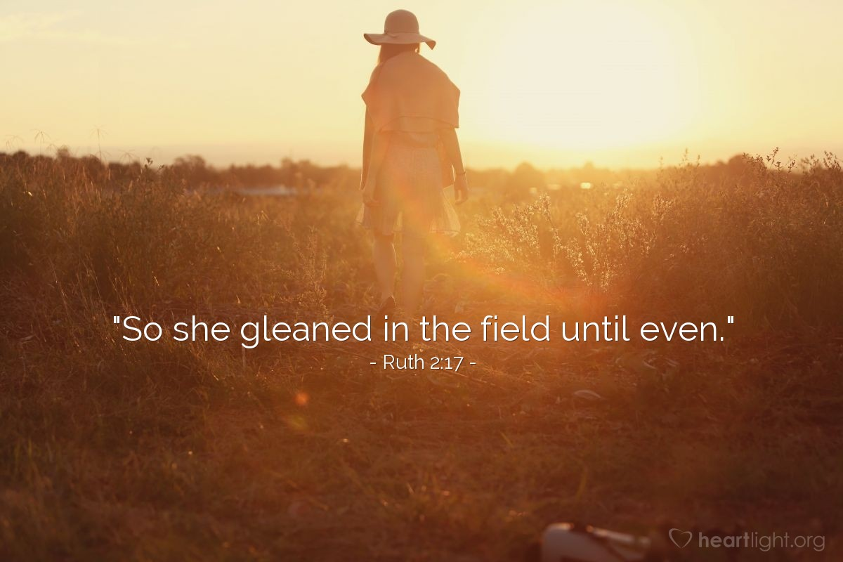 "Illustration of Ruth 2:17 — ""So she gleaned in the field until even."""