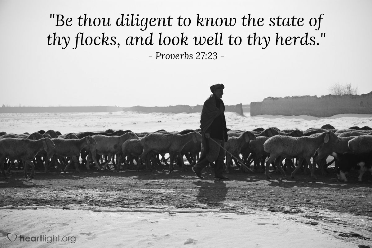 "Illustration of Proverbs 27:23 — ""Be thou diligent to know the state of thy flocks, and look well to thy herds."""