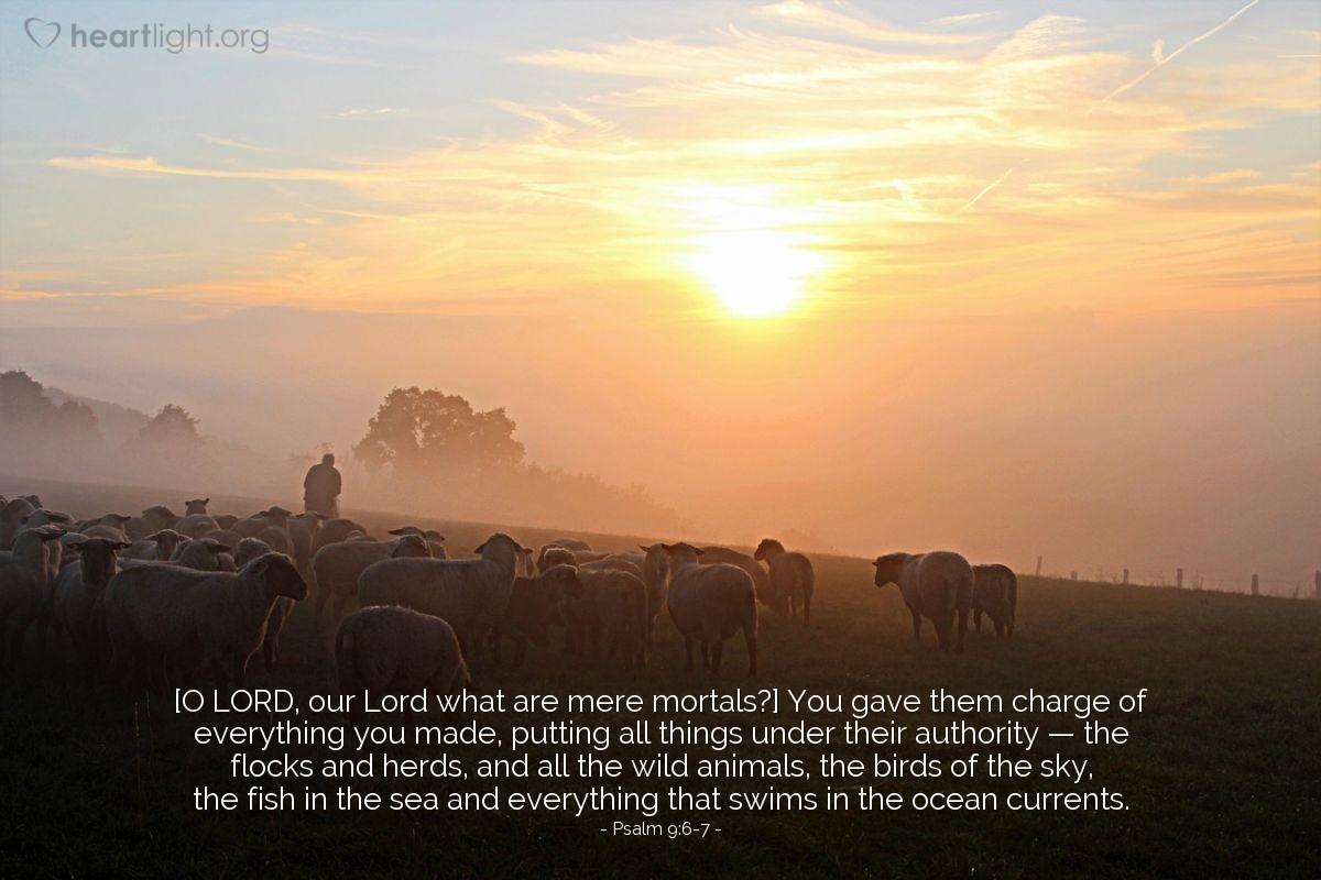 Illustration of Psalm 9:6-7 — [O LORD, our Lord what are mere mortals?] You gave them charge of everything you made, putting all things under their authority — the flocks and herds, and all the wild animals, the birds of the sky, the fish in the sea and everything that swims in the ocean currents.