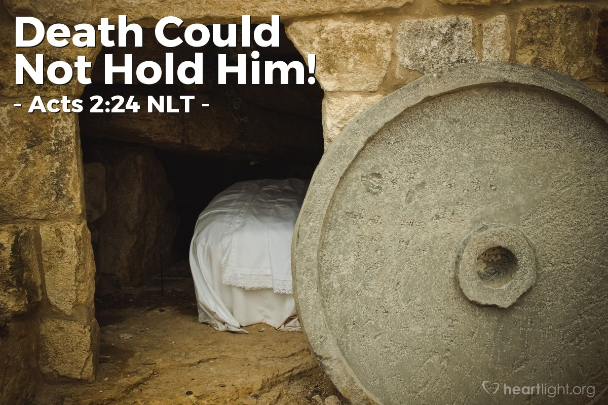 """Illustration of Acts 2:24 NLT — [Peter continued his message:] """"But God released [Jesus] from the horrors of death and raised him back to life, for death could not keep him in its grip."""""""