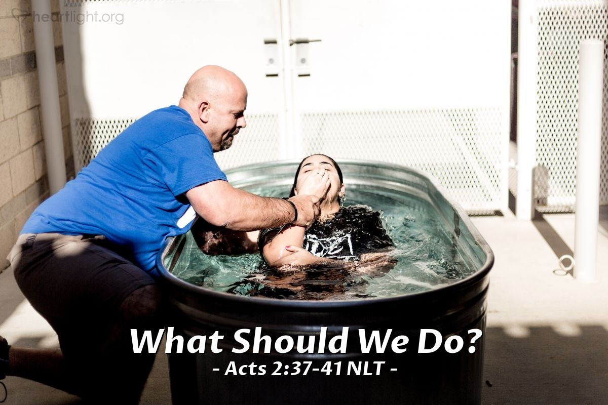 """Illustration of Acts 2:37-41 NLT — Peter's words pierced their hearts, and they said to him and to the other apostles, """"Brothers, what should we do?"""" Peter replied, """"Each of you must repent of your sins and turn to God, and be baptized in the name of Jesus Christ for the forgiveness of your sins. Then you will receive the gift of the Holy Spirit. This promise is to you, to your children, and to those far away — all who have been called by the Lord our God."""" Then Peter continued preaching for a long time, strongly urging all his listeners, """"Save yourselves from this crooked generation!"""" Those who believed what Peter said were baptized and added to the church that day — about 3,000 in all."""