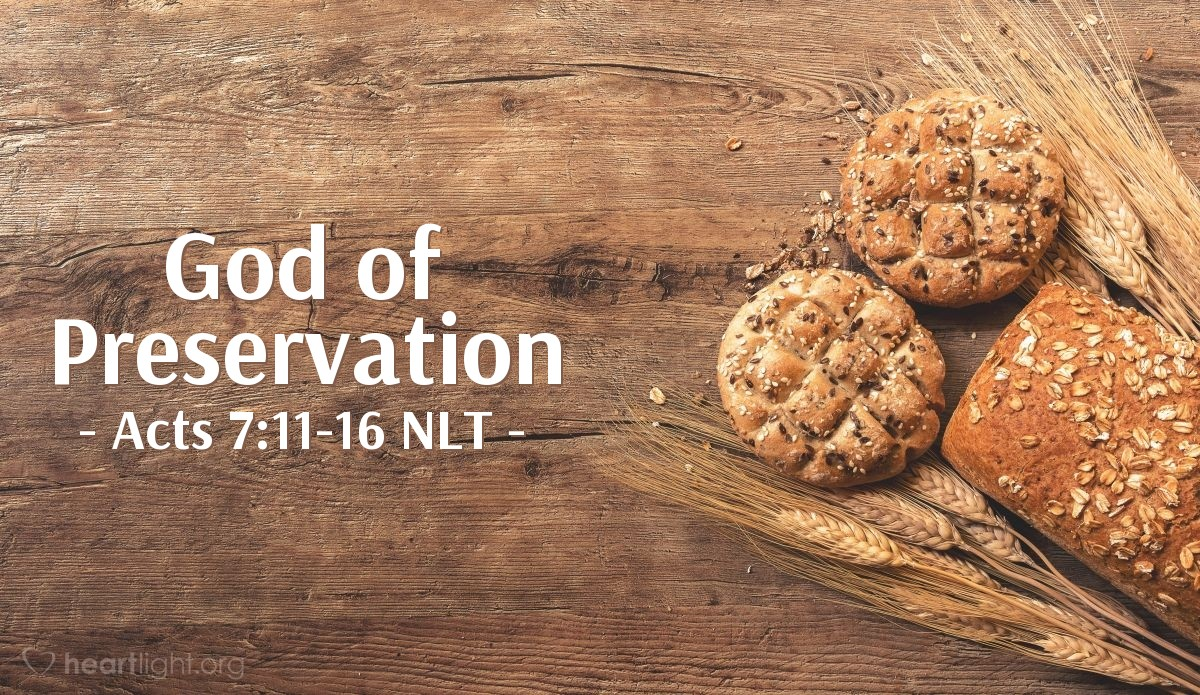"""Illustration of Acts 7:11-16 NLT — [As Stephen continued his defense, he pointed to God's faithfulness through Joseph:] """"But a famine came upon Egypt and Canaan. There was great misery, and our ancestors ran out of food. Jacob heard that there was still grain in Egypt, so he sent his sons — our ancestors — to buy some. The second time they went, Joseph revealed his identity to his brothers, and they were introduced to Pharaoh. Then Joseph sent for his father, Jacob, and all his relatives to come to Egypt, seventy-five persons in all. So Jacob went to Egypt. He died there, as did our ancestors. Their bodies were taken to Shechem and buried in the tomb Abraham had bought for a certain price from Hamor's sons in Shechem."""""""