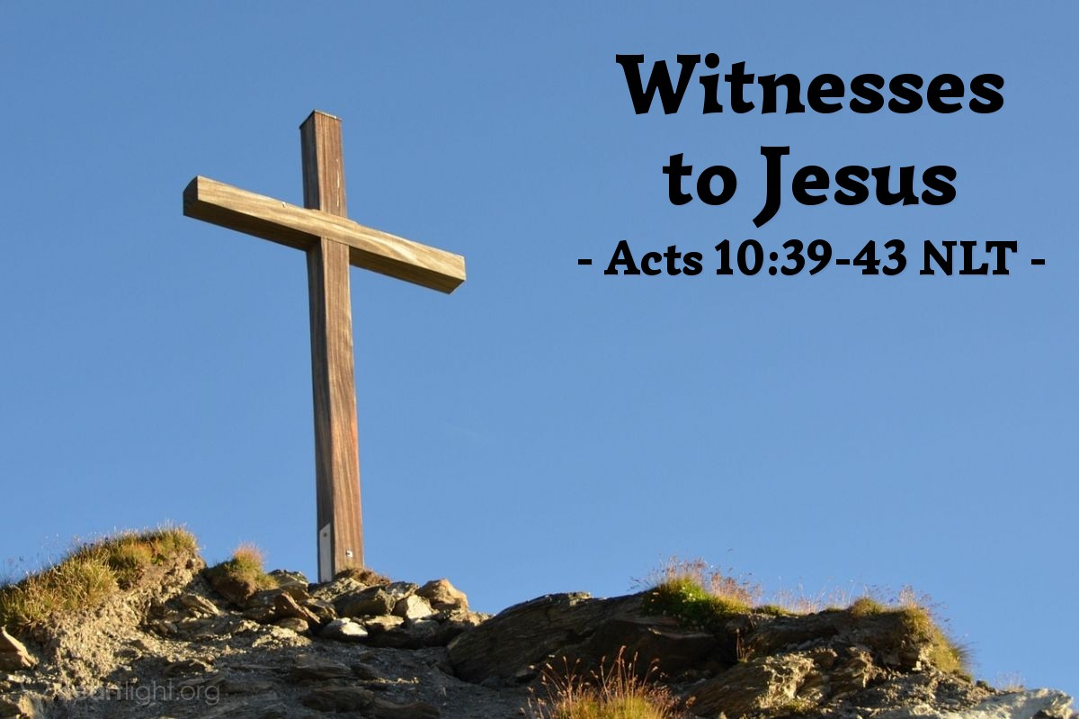 """Illustration of Acts 10:39-43 NLT — [Peter continued his message to Cornelius and the others with him:] """"And we apostles are witnesses of all [Jesus] did throughout Judea and in Jerusalem. They put him to death by hanging him on a cross, but God raised him to life on the third day. Then God allowed him to appear, not to the general public, but to us whom God had chosen in advance to be his witnesses. We were those who ate and drank with him after he rose from the dead. And he ordered us to preach everywhere and to testify that Jesus is the one appointed by God to be the judge of all — the living and the dead. He is the one all the prophets testified about, saying that everyone who believes in him will have their sins forgiven through his name."""""""