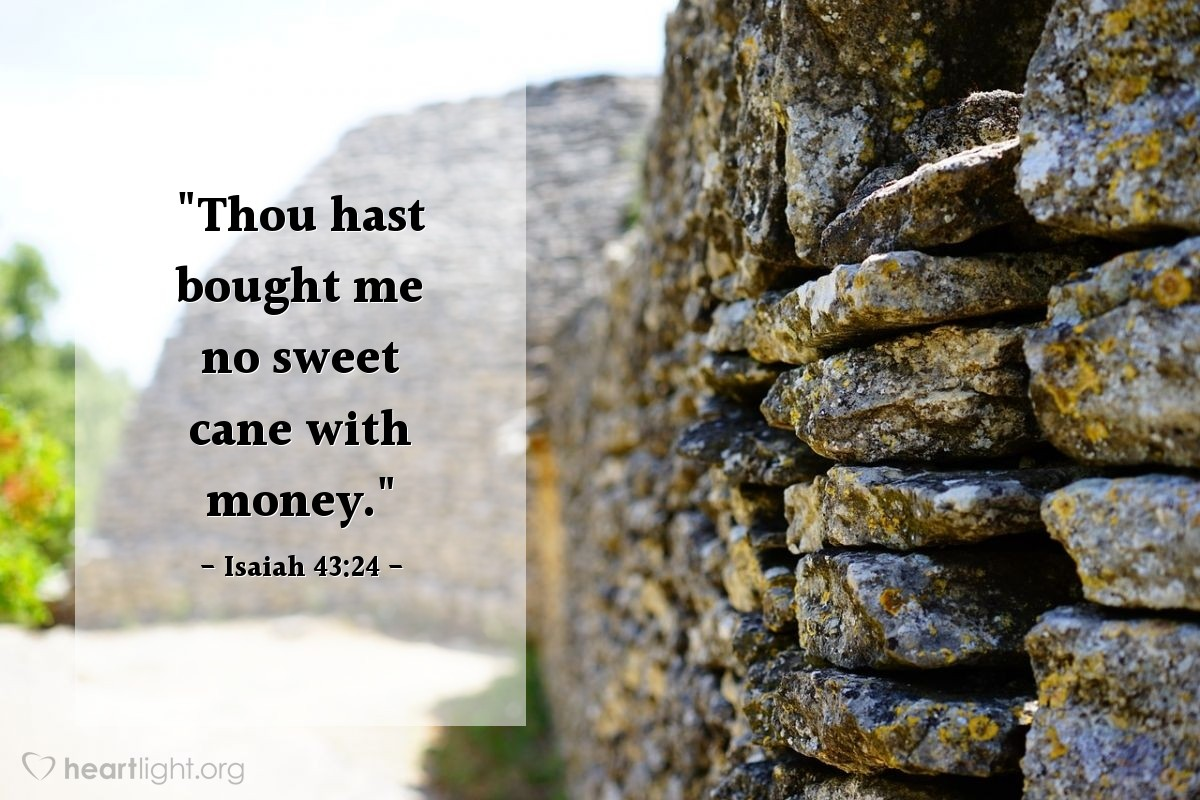 "Illustration of Isaiah 43:24 — ""Thou hast bought me no sweet cane with money."""