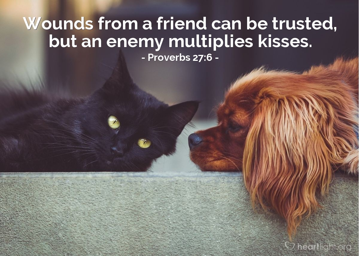 Illustration of Proverbs 27:6 — Wounds from a friend can be trusted, but an enemy multiplies kisses.