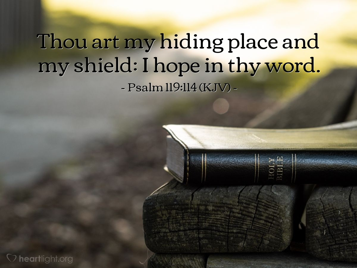 Illustration of Psalm 119:114 (KJV) — Thou art my hiding place and my shield: I hope in thy word.