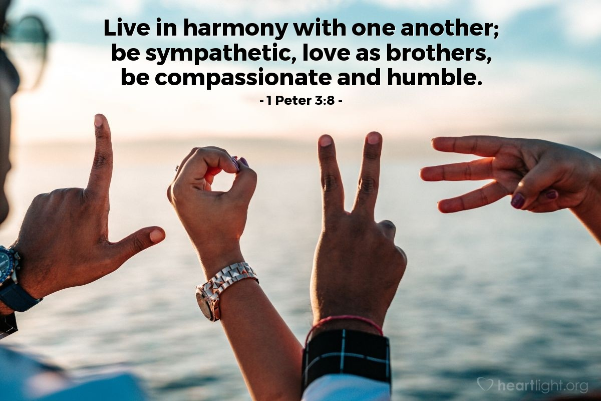 Illustration of 1 Peter 3:8 — Live in harmony with one another; be sympathetic, love as brothers, be compassionate and humble.