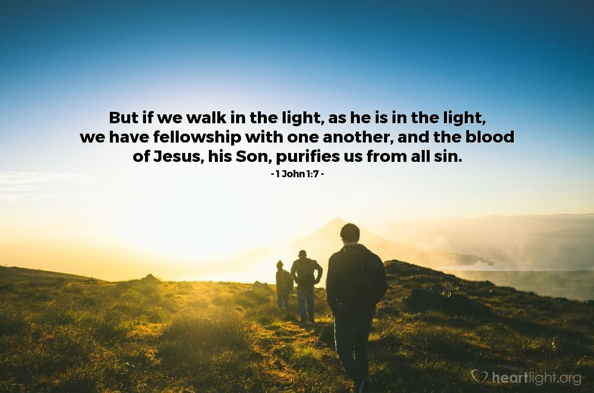Illustration of 1 John 1:7 — But if we walk in the light, as he is in the light, we have fellowship with one another, and the blood of Jesus, his Son, purifies us from all sin.