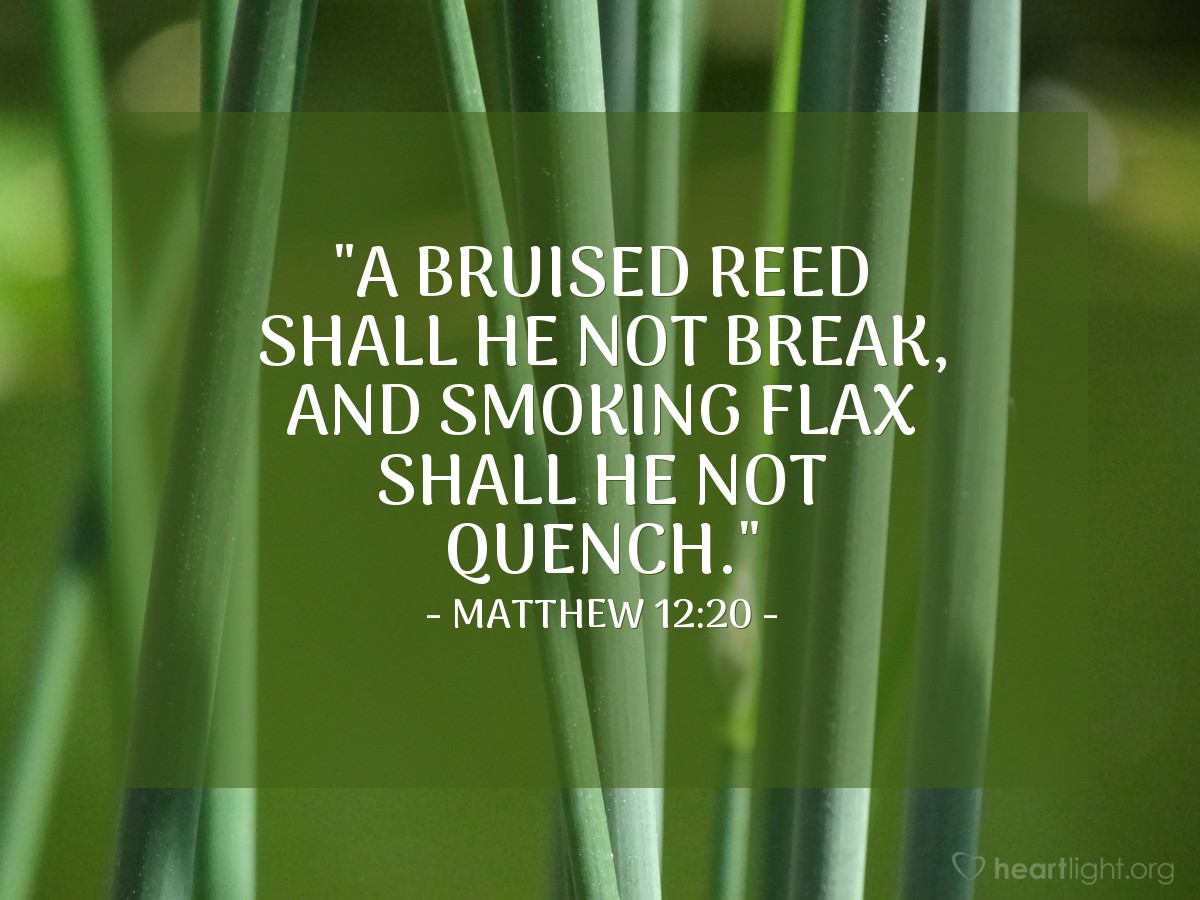 "Illustration of Matthew 12:20 — ""A bruised reed shall he not break, and smoking flax shall he not quench."""