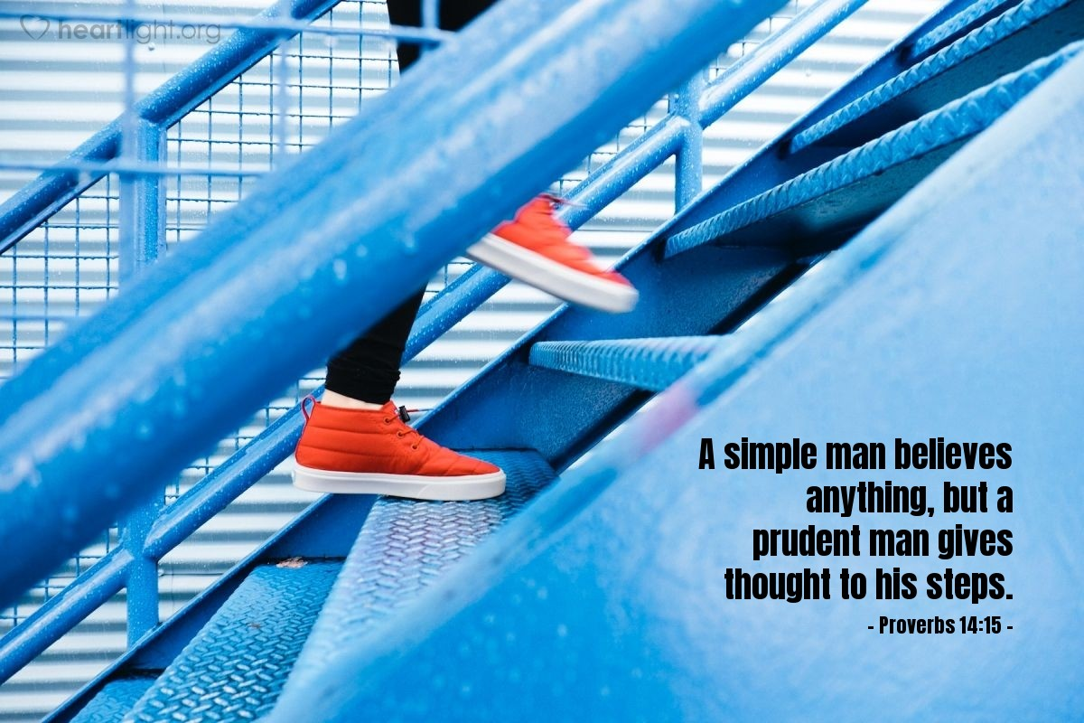 Illustration of Proverbs 14:15 — A simple man believes anything, but a prudent man gives thought to his steps.