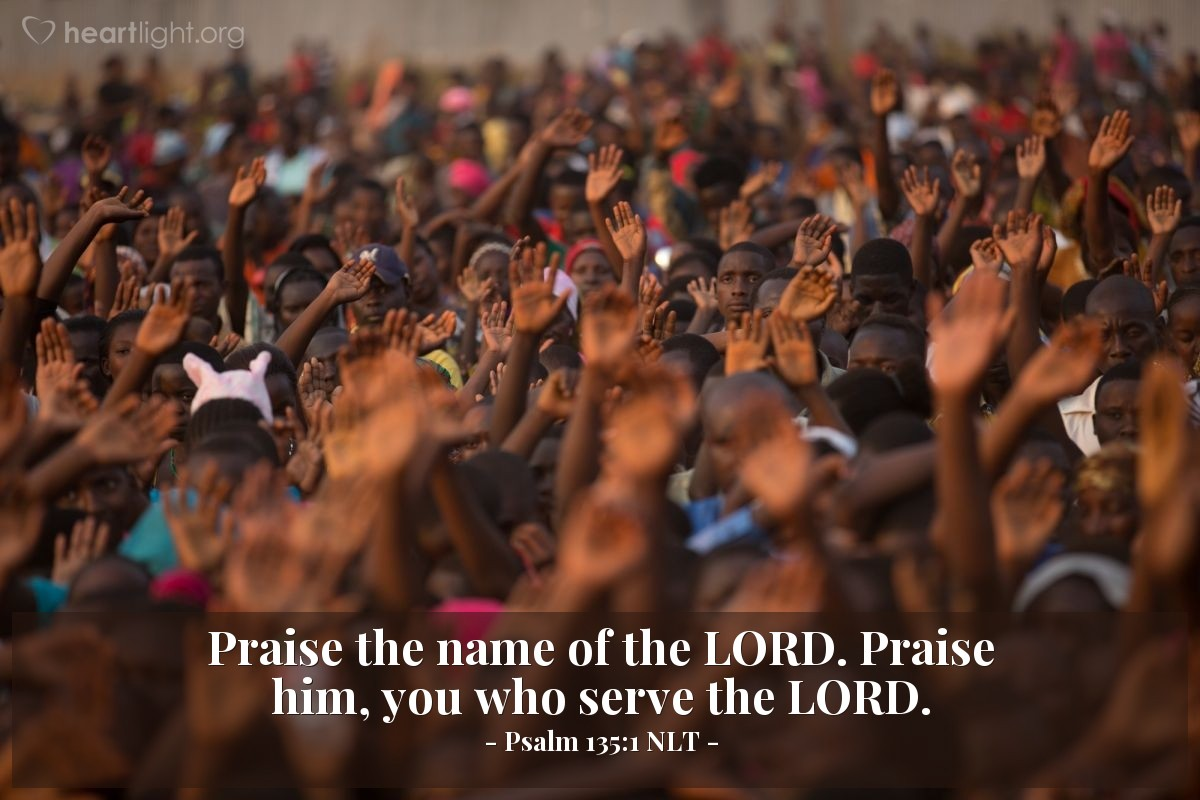 Illustration of Psalm 135:1 NLT — Praise the name of the LORD. Praise him, you who serve the LORD.