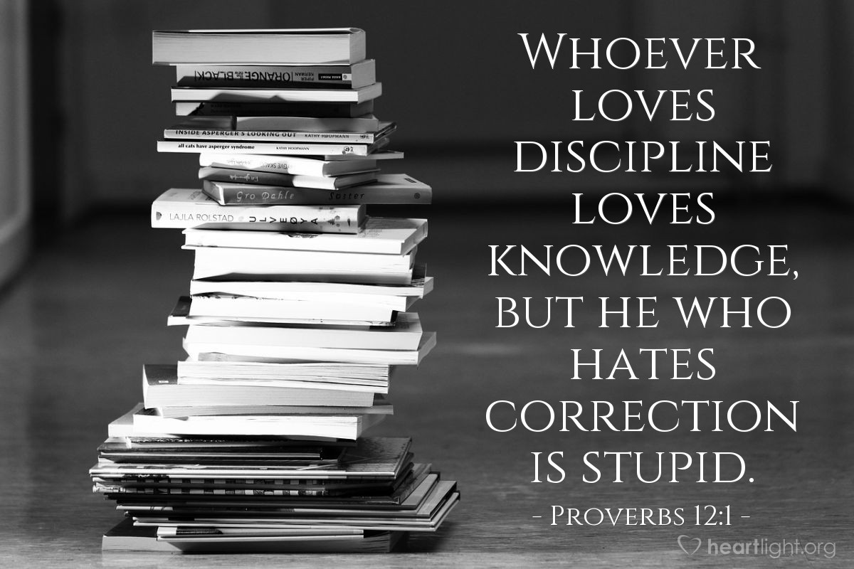 Illustration of Proverbs 12:1 — Whoever loves discipline loves knowledge, but he who hates correction is stupid.