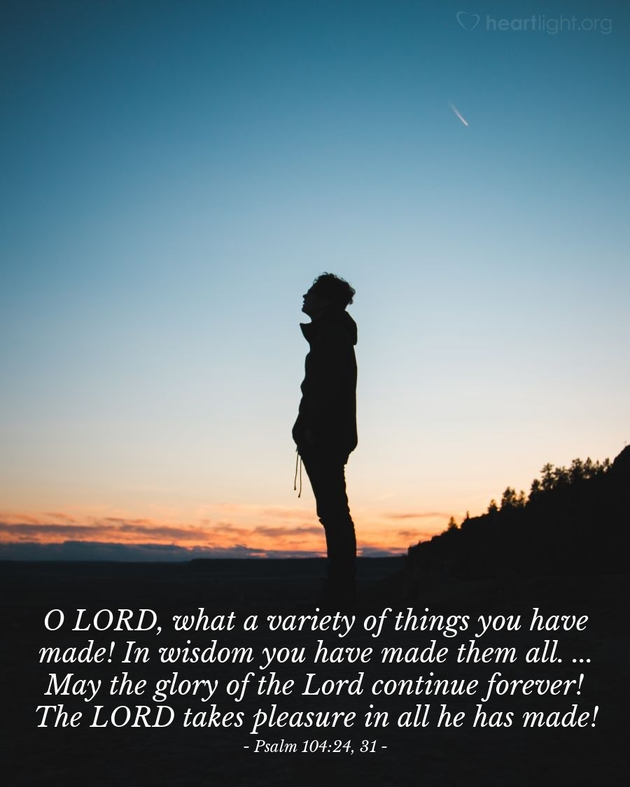 Illustration of Psalm 104:24, 31 — O LORD, what a variety of things you have made! In wisdom you have made them all. ... May the glory of the Lord continue forever! The LORD takes pleasure in all he has made!