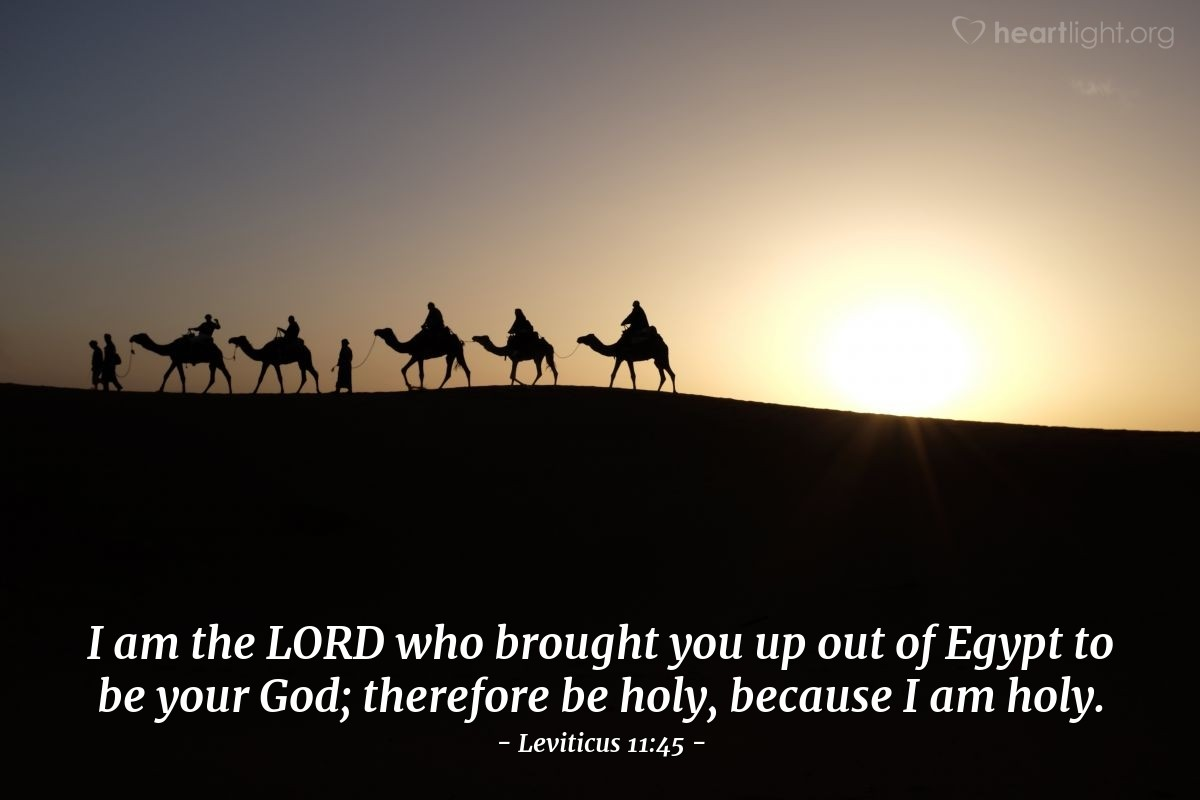 Illustration of Leviticus 11:45 — I am the LORD who brought you up out of Egypt to be your God; therefore be holy, because I am holy.