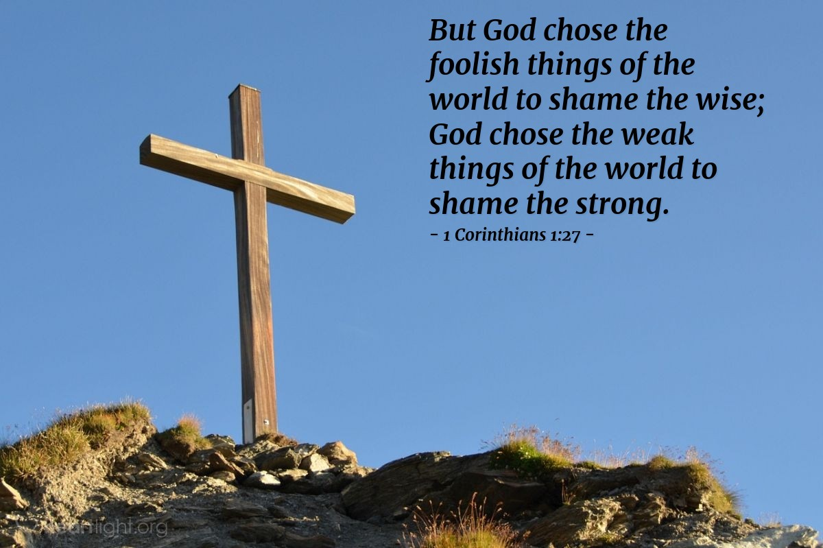 Illustration of 1 Corinthians 1:27 — But God chose the foolish things of the world to shame the wise; God chose the weak things of the world to shame the strong.