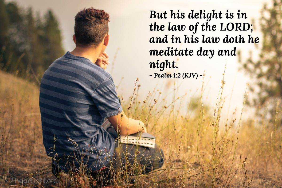 Illustration of Psalm 1:2 (KJV) — But his delight is in the law of the LORD; and in his law doth he meditate day and night.