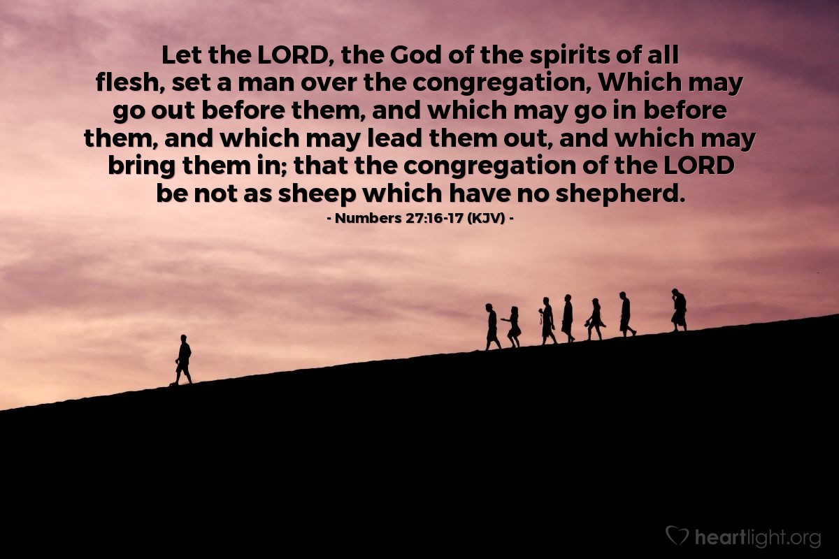 Illustration of Numbers 27:16-17 (KJV) — Let the LORD, the God of the spirits of all flesh, set a man over the congregation, Which may go out before them, and which may go in before them, and which may lead them out, and which may bring them in; that the congregation of the LORD be not as sheep which have no shepherd.