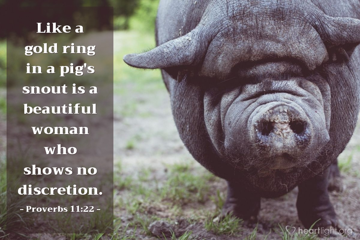 Illustration of Proverbs 11:22 — Like a gold ring in a pig's snout is a beautiful woman who shows no discretion.