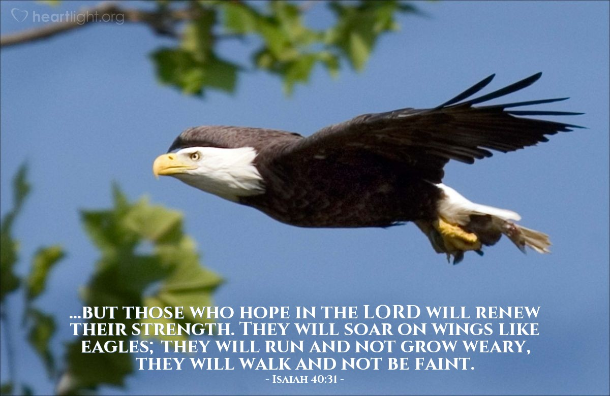 Illustration of Isaiah 40:31 — ...but those who hope in the LORD will renew their strength. They will soar on wings like eagles; they will run and not grow weary, they will walk and not be faint.