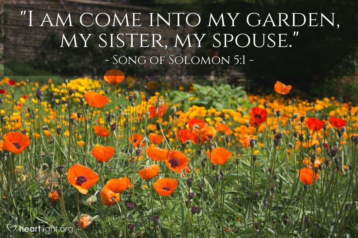 "Illustration of Song of Solomon 5:1 — ""I am come into my garden, my sister, my spouse."""