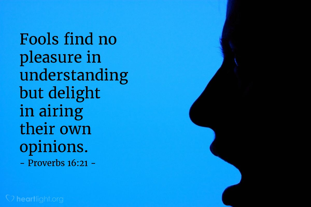 Illustration of Proverbs 16:21 — Fools find no pleasure in understanding but delight in airing their own opinions.