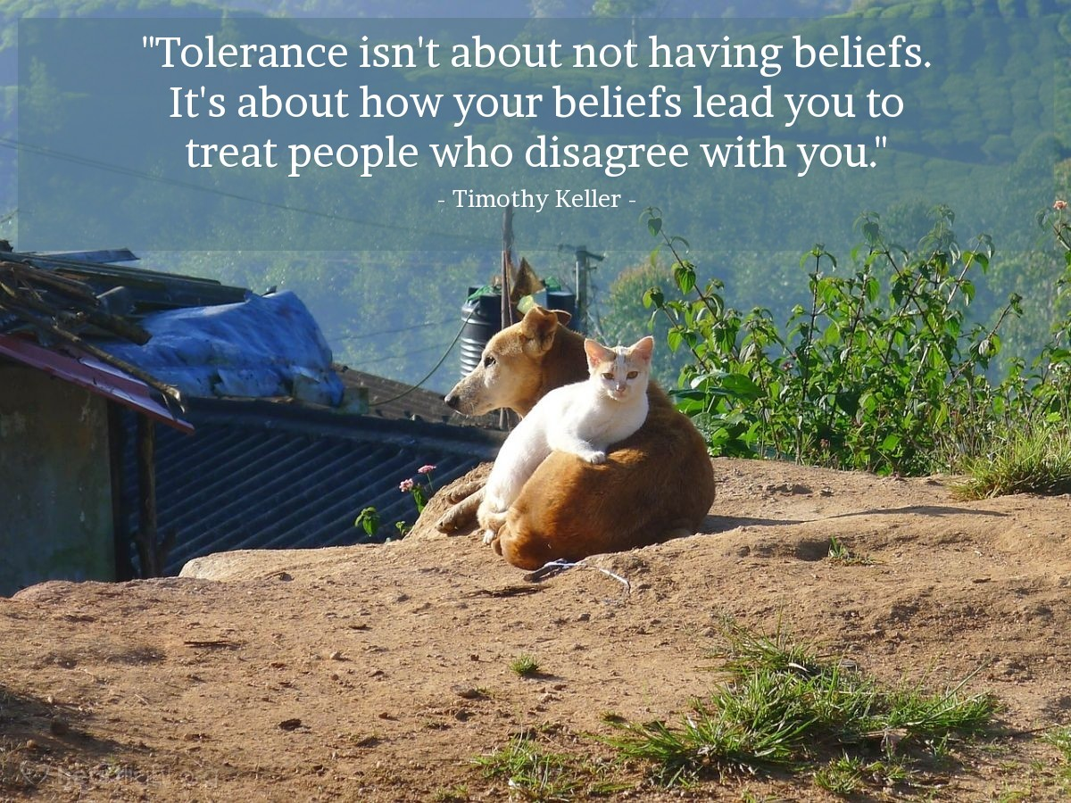 """Illustration of Timothy Keller — """"Tolerance isn't about not having beliefs. It's about how your beliefs lead you to treat people who disagree with you."""""""
