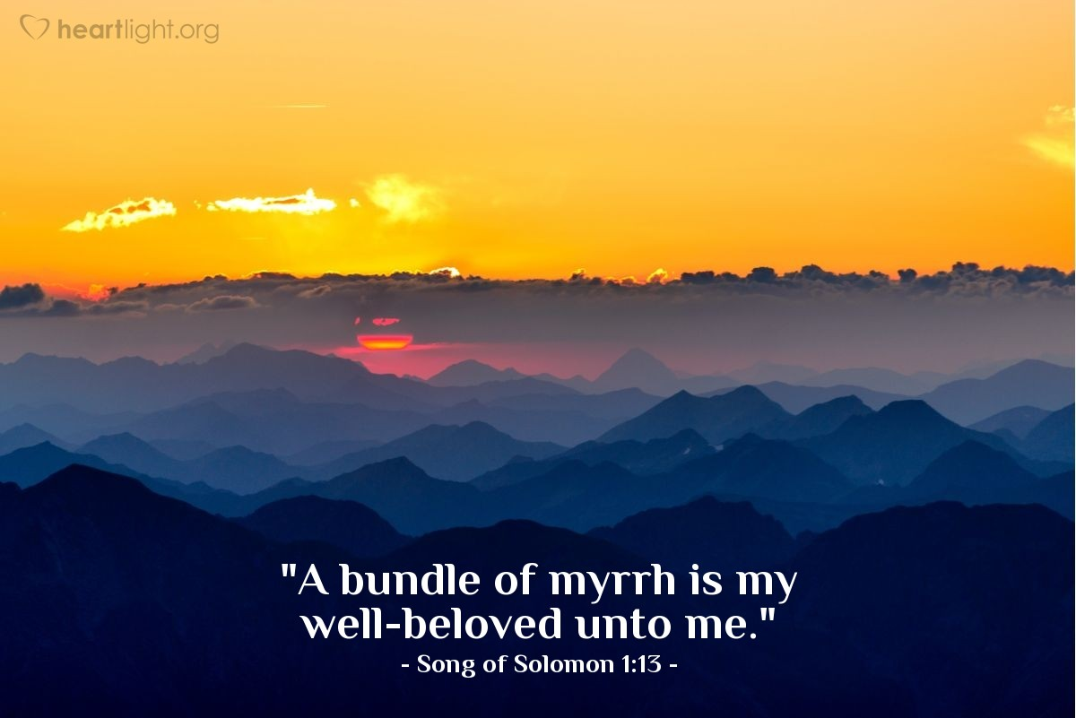 "Illustration of Song of Solomon 1:13 — ""A bundle of myrrh is my well-beloved unto me."""