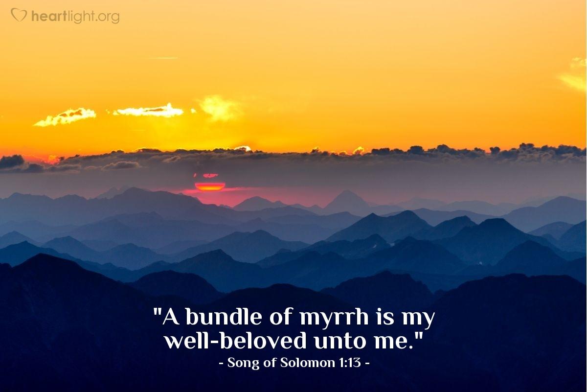 "Illustration of Song of Solomon 1:13 — ""A bundle of myrrh is my well-beloved unto me."""