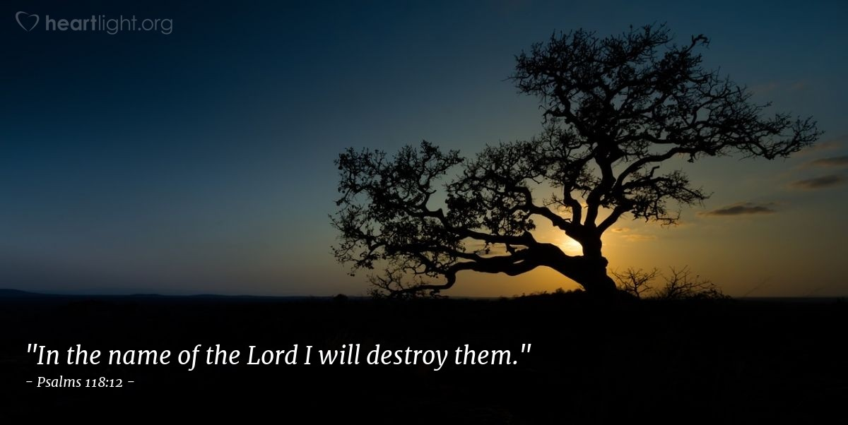 "Illustration of Psalms 118:12 — ""In the name of the Lord I will destroy them."""