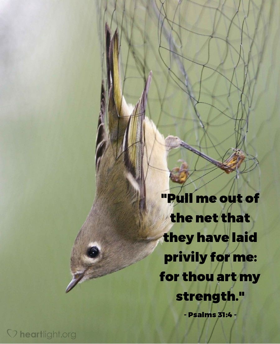 "Illustration of Psalms 31:4 — ""Pull me out of the net that they have laid privily for me: for thou art my strength."""
