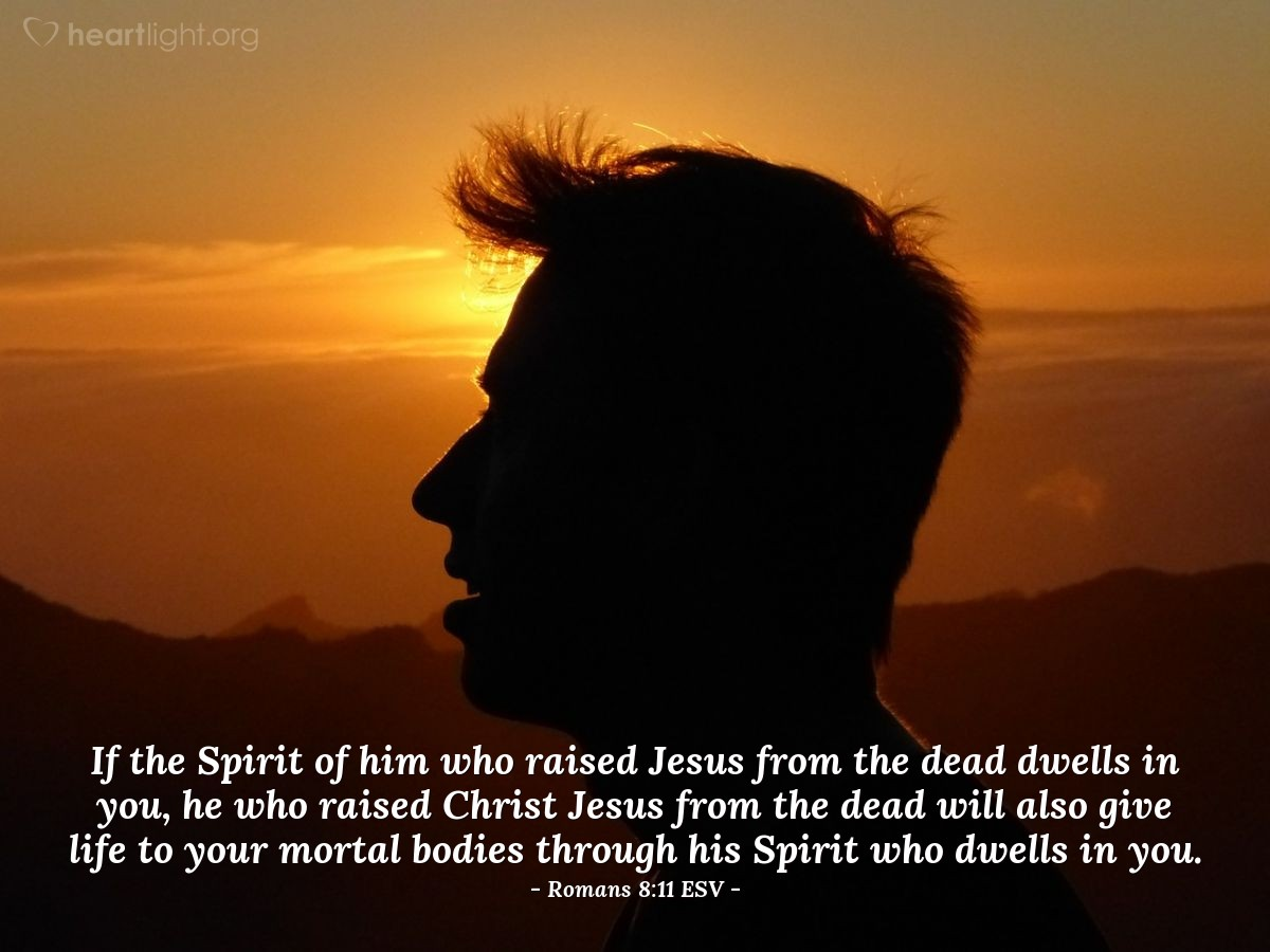 Illustration of Romans 8:11 ESV — If the Spirit of him who raised Jesus from the dead dwells in you, he who raised Christ Jesus from the dead will also give life to your mortal bodies through his Spirit who dwells in you.