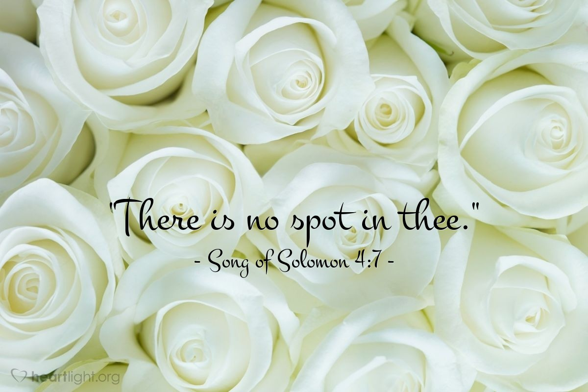 """Illustration of Song of Solomon 4:7 — """"There is no spot in thee."""""""