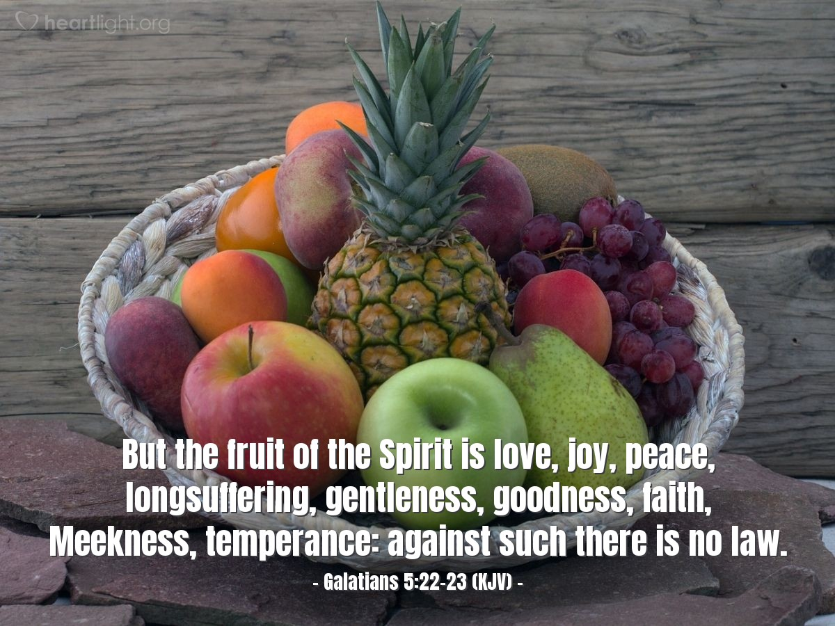 Illustration of Galatians 5:22-23 (KJV) — But the fruit of the Spirit is love, joy, peace, longsuffering, gentleness, goodness, faith, Meekness, temperance: against such there is no law.