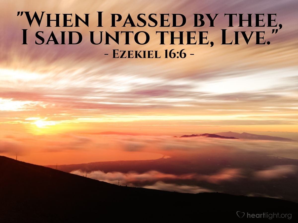 "Illustration of Ezekiel 16:6 — ""When I passed by thee, I said unto thee, Live."""