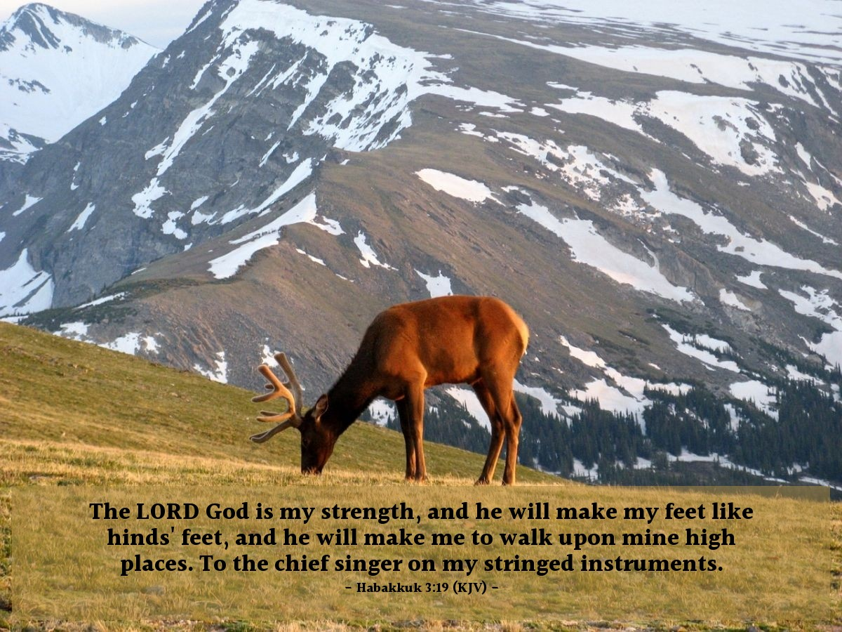 Illustration of Habakkuk 3:19 (KJV) — The LORD God is my strength, and he will make my feet like hinds' feet, and he will make me to walk upon mine high places. To the chief singer on my stringed instruments.
