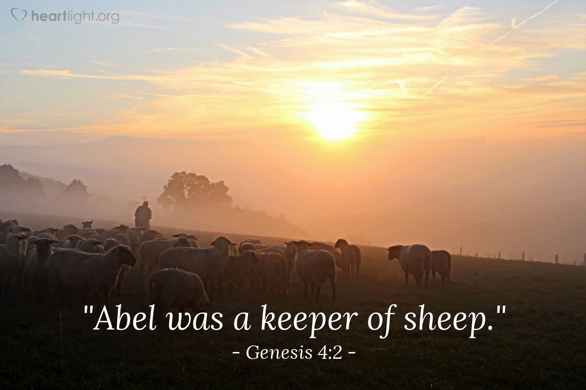 "Illustration of Genesis 4:2 — ""Abel was a keeper of sheep."""